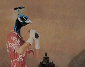 Miss Peacock 8.5 x 11 inch Paper Collage Print, Surreal Retro Colorful Bird Collage Art Print