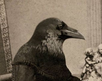 Raven Art Print, Oddities, Halloween Decor, Gothic Wall Decor, 5x7 Inch Print, Anthropomorphic Bird Art, frighten