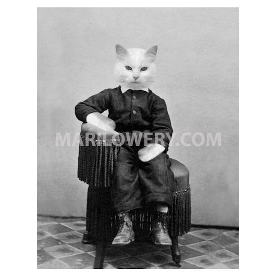 Animal Wall Decor Retro Cat Art Print frighten Black and White 7x7 on 8.5 x 11 inch paper Cat with Sunglasses Paper Collage Print