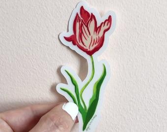 Tulip Botanical sticker, labtop decor, illustrated sticker, by Abigail Gray Swartz