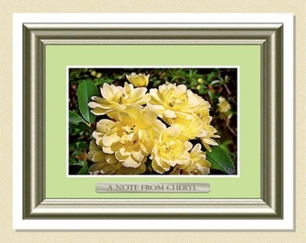 Lady Banks Yellow Rose - Personalized Note Cards (10 Folded)