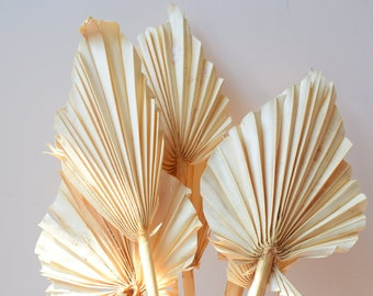 Palm spears cream 7 pack | Handmade dried leaf shape for floristry and dried flower bouquets