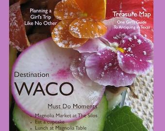 Magazine Bag Duct Tape ANA DELIGHT Destination WACO