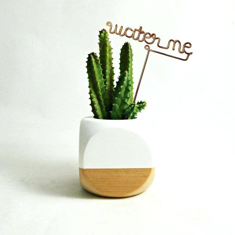 Water Me  Wire Desk Plant Markers  Indoor Custom Herb Marker image 0