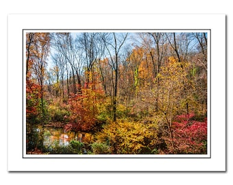 Colorful Fall Landscape Photo Note Card with Envelope, Blank inside, Nature Autumn Foliage