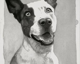 Sumi Ink Pet Portraits