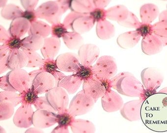 Cherry blossoms etsy 48 wafer paper cherry blossom flowers 1 across edible flowers for wedding cakes cupcake toppers and cake pops cake decorating ideas mightylinksfo