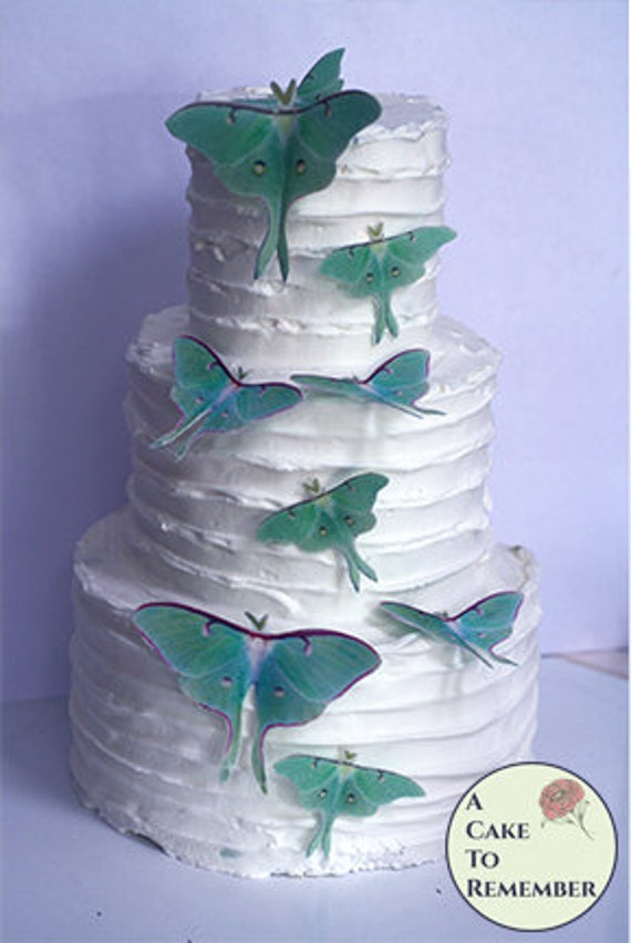 9 Edible Luna Moth Cake Decorations For A Woodland Wedding Cake Or A