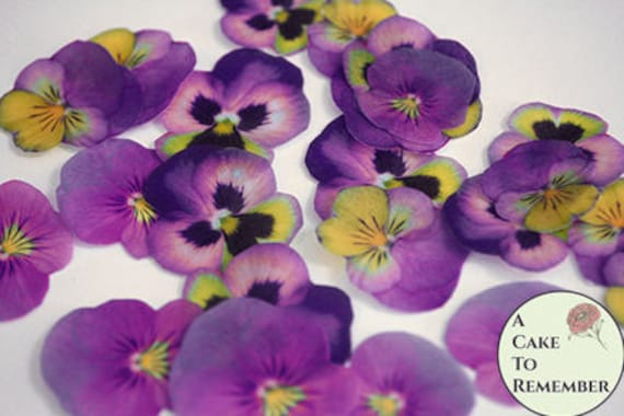 24 purple and yellow edible wafer paper pansies 15 etsy image 0 mightylinksfo