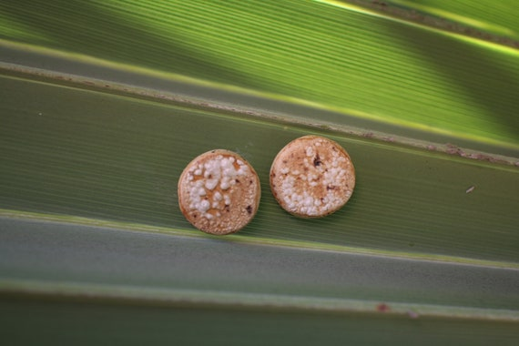Handmade Ceramic Stud Earrings