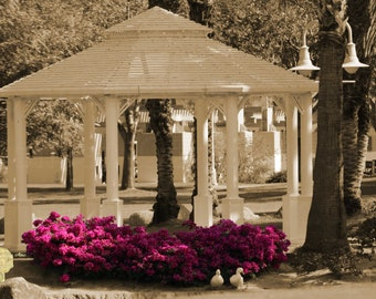 """Park scene with Gazebo and 2 White Ducks in Sepia & Selective Color """"Meet Me At The Gazebo"""""""
