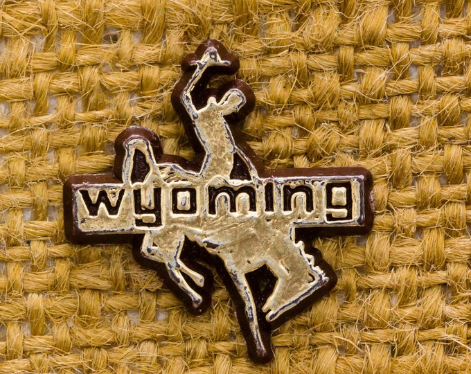 Wyoming Cowboy Vintage Lapel Pin Plastic Gold Horse Bucking Bronco Rodeo Button Vtg Pin 7AN