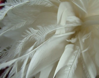 Feathered wedding hairpiece headband tiara veil wedding veil
