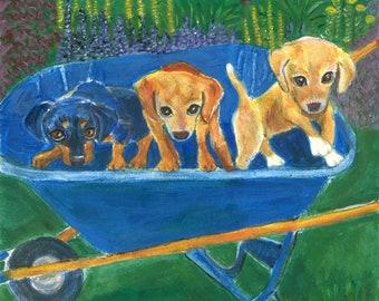 "Dog art greeting card, ""First Ride"" Three pups in a wheelbarrow in a flower garden.  flowers,  5"" x 5"" blank card,"