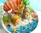 Mermaid Beach Terrarium Kit Air Plants Coastal Living Beach Decor 2 Mermaids 2 Flamingos 2 Sea Creatures 8.5 quot Ceramic Bowl Gift