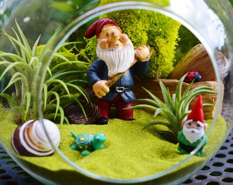 "I spy a little Gnome Terrarium ~ Cute Gnome  working in the Garden ~ 2 Air plants ~ 6"" Glass Round Globe ~ Gift Idea"