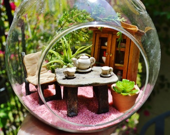 "Tea Garden Terrarium Kit ~ Medium 6"" Air Plant Terrarium Kits ~ Home Decor ~ Little Kitchen Scene ~ Mother's Day Gift ~ Tea Party ~ Gift"
