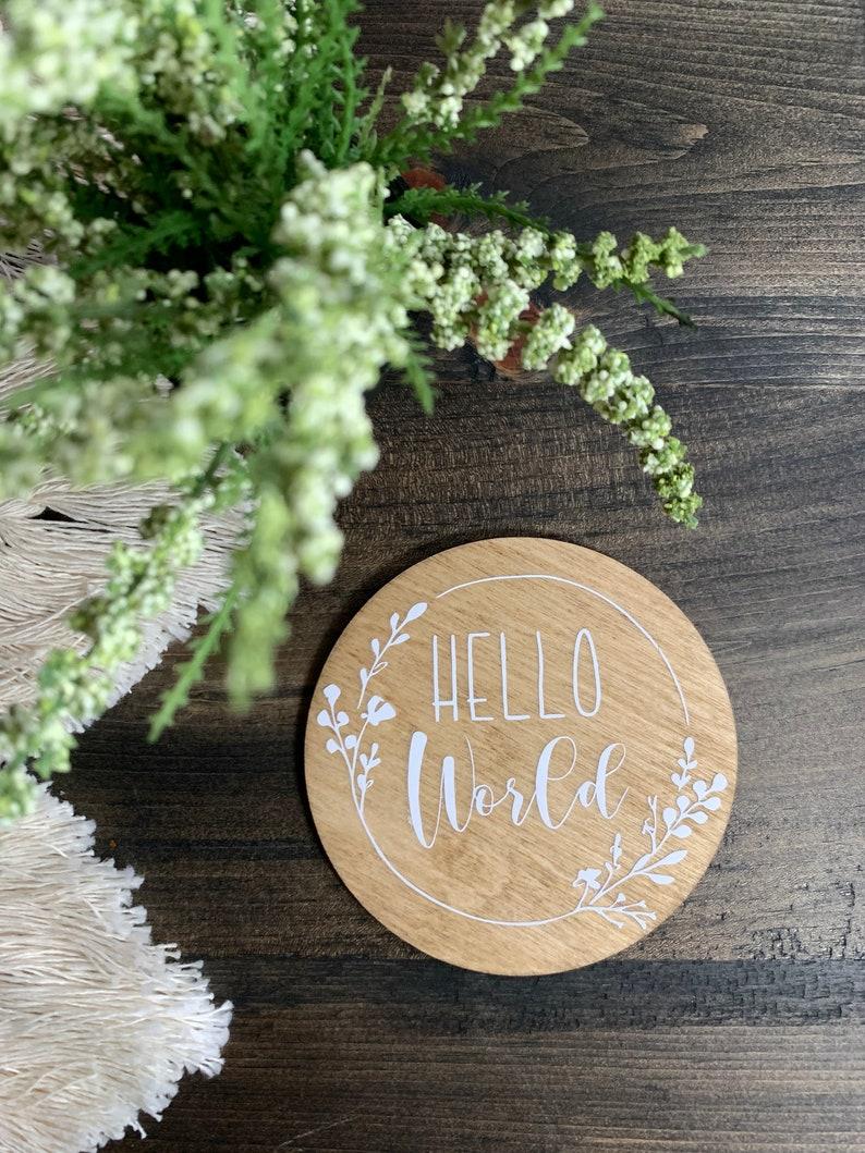 Pregnancy Hello World Photo Prop Name Props Milestones Baby Milestone Milestone Round Baby Months Milestone