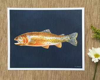 Cutthroat Trout, Fly Fishing Art, Montana Fishing Art, 8 x 10 Art Print