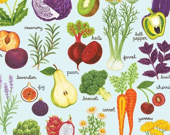 SALE 2018 Kitchen Garden Calendar, Garden Herbs Fruit and Veggies Calendar, Single Page 12 x 18 Poster Calendar