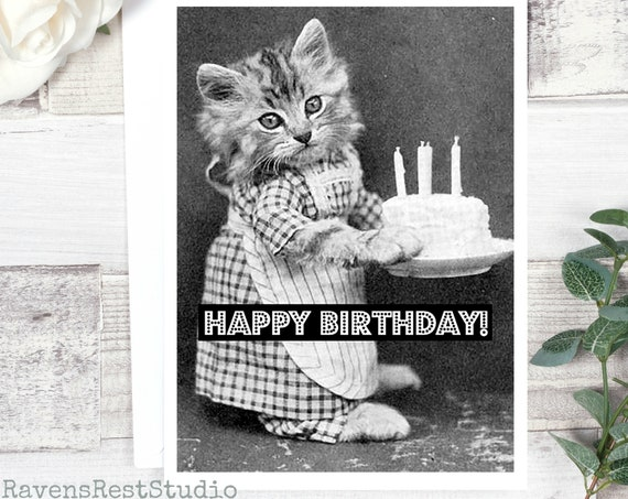 Birthday Card. Vintage Photo Card. Cat With Birthday Cake. Greeting Card #68.