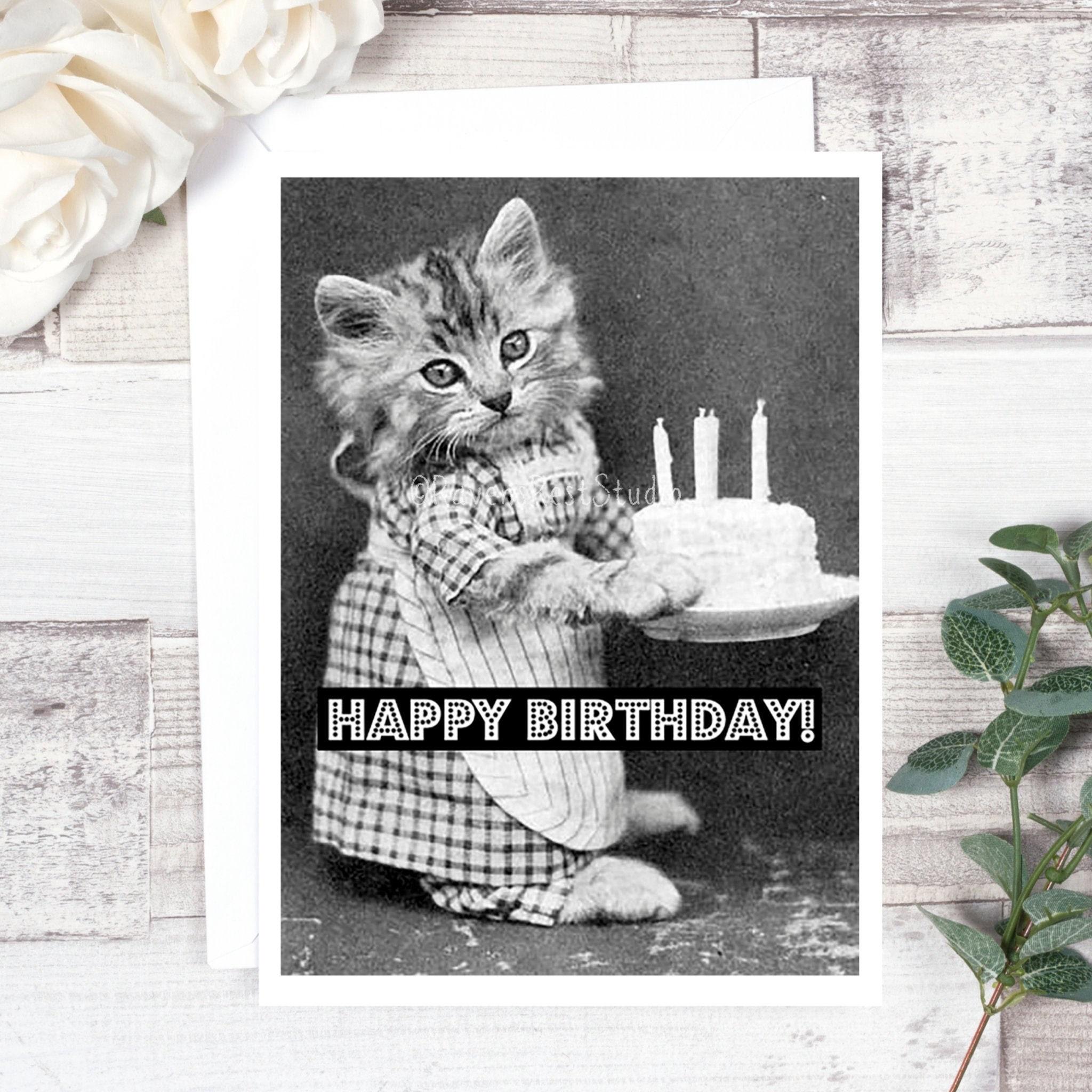 Magnificent Card 68 Birthday Card Happy Birthday Vintage Photo Card Cat Funny Birthday Cards Online Elaedamsfinfo