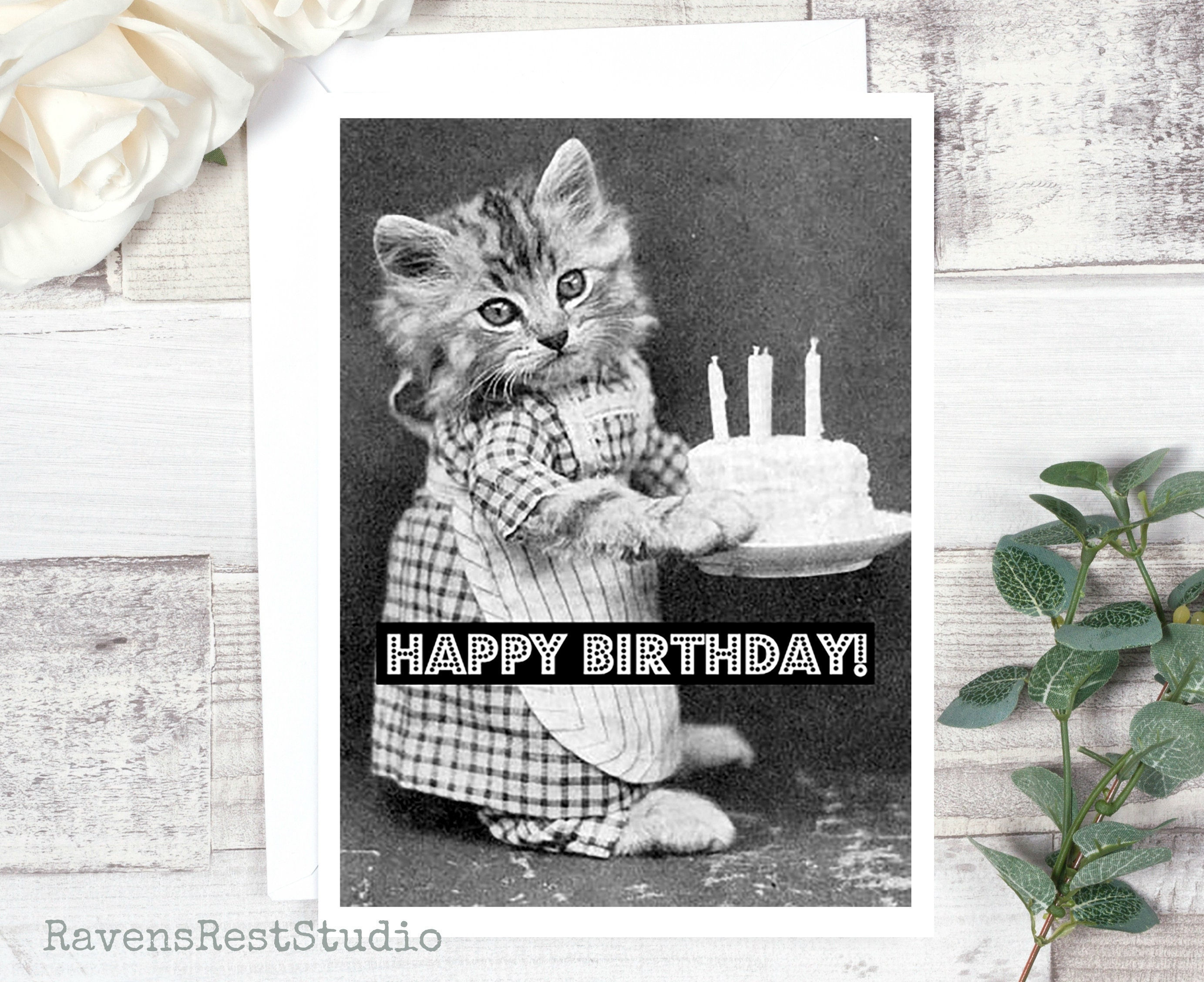 Birthday Card Vintage Photo Card Cat With Birthday Cake Greeting