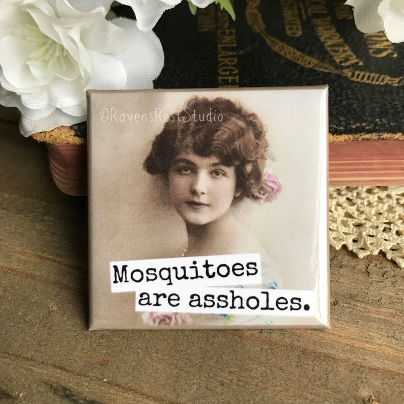 Funny Fridge Magnet Housewarming Gift New Home New House Gift Magnet #214 Party Favor Raven/'s Rest Studio Mosquitoes Funny Magnets