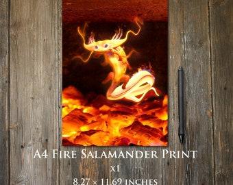 Fire Salamander A4 print