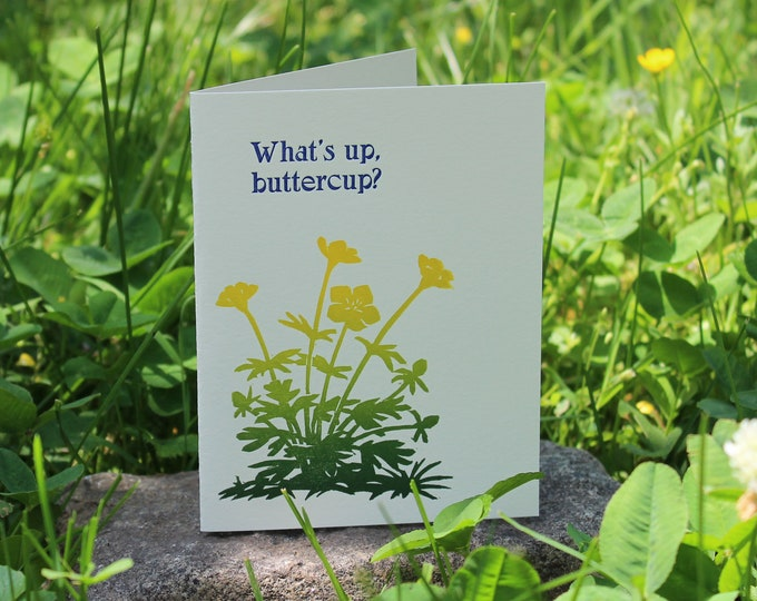 "Letterpress Greeting Card: ""What's up, buttercup?"""