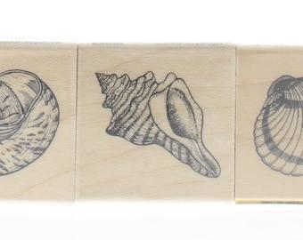 Inkadinkado Seashell Trio Ocean Sea Shells Wooden Rubber Stamp