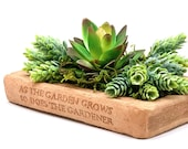 SUCCULENT LIBRARY PLANTER (Choice of Colors) Solid Stone Book Saucer, Direct Planting or Holds a Herb Box Container. Handcrafted in U.S.A