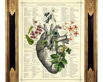 Anatomical Heart Flowers Art Botany II - Vintage Victorian Book Page Art Print Steampunk Valentine's Day Gothic