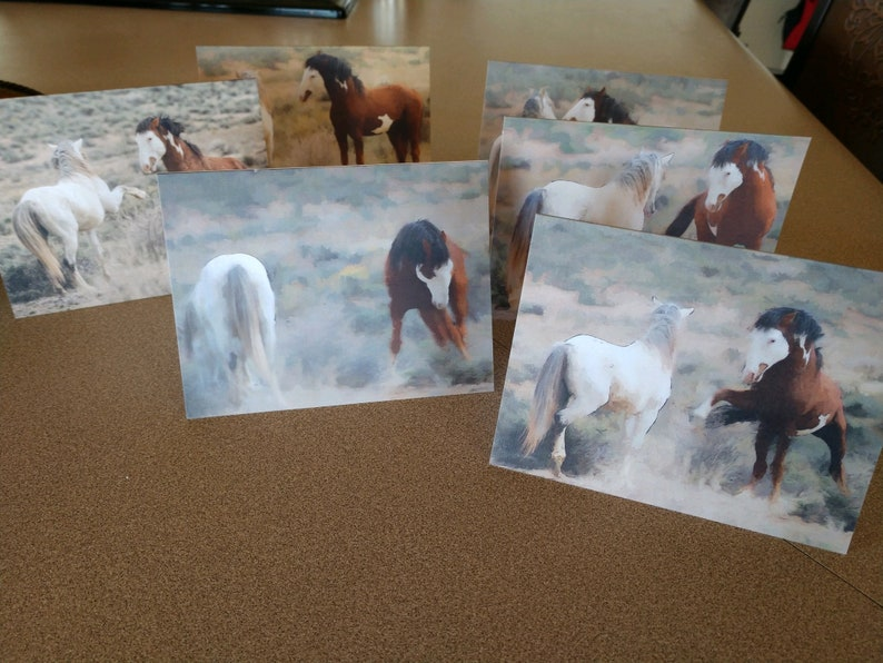 Wild Mustang Greeting Cards  5.5x4.25 Blank Inside  Pack of image 0