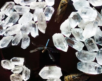 Clear Quartz Points Stones Crystals Clarity Calming Energy Healing Gemstones Polished Macabre Art & Magickal Accoutrements by LadyAlchemy13