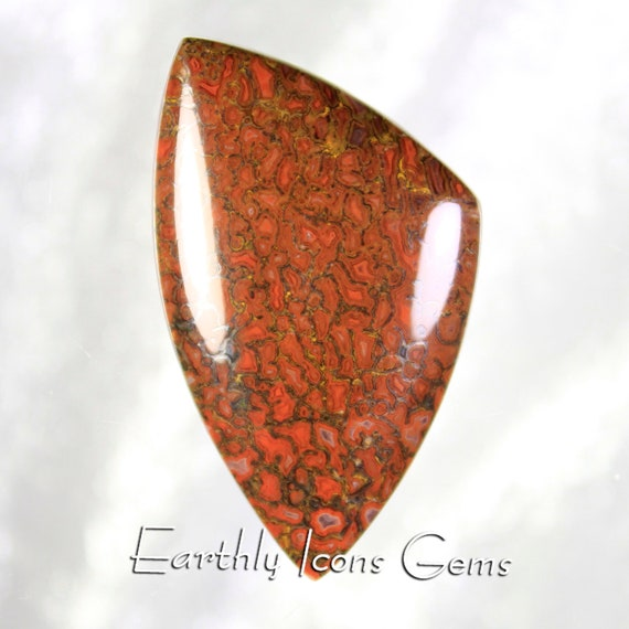 Large Red Fossilized Dinosaur Bone Designer Cut Cabochon