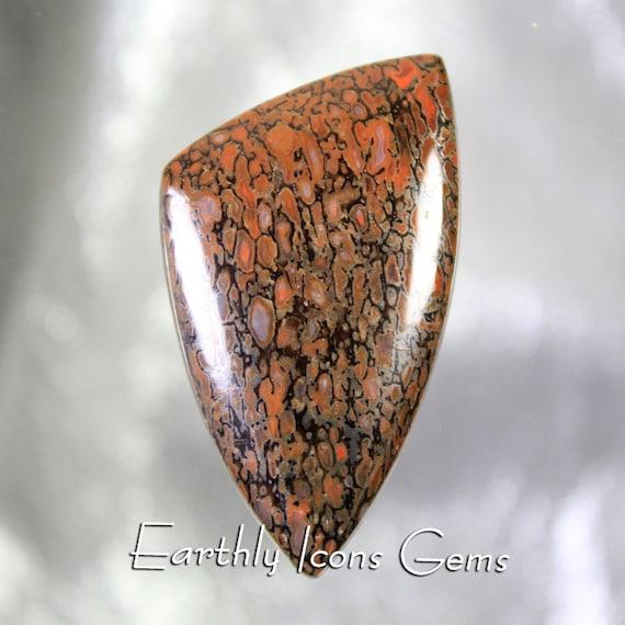 Red Fossilized Dinosaur Bone Designer Cut Cabochon