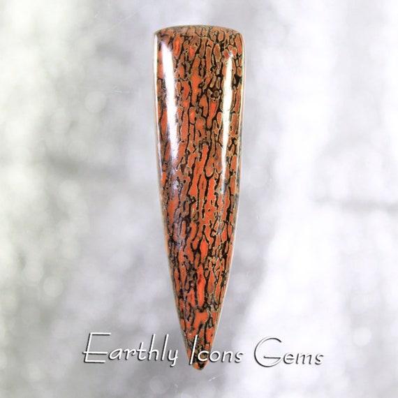 Red Fossilized Dinosaur Bone Designer Cut Cabochon, Designer Cabochons