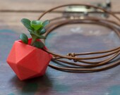Icosahedron Wearable Planter in Coral