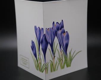 "Purple Crocus- 4.25"" X 5.5"" Note Card"