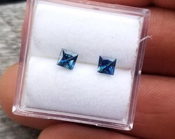 Montana Blue Sapphire Pair 0.67cts tw Princess Cut