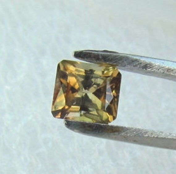 Bicolor Tourmaline 1.34cts Emerald Cut