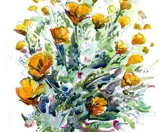California Poppies- fine art print of a watercolor sketch