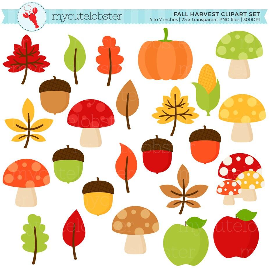 Fall Harvest Clipart Set clip art set of leaves acorns | Etsy