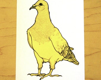 Yellow Pigeon- Mini Archival Print