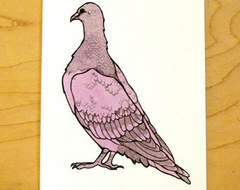 Purple Pigeon- Mini Archival Print