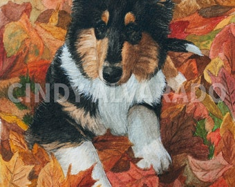"""New!  Collie Puppy """"Autumn's Palette"""" Limited Edition Print"""