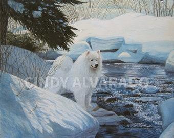 "Samoyed giclee print ""Snowy Crossing"" by Cindy Alvarado"