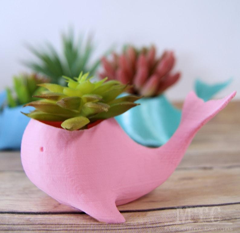 Whale Planter Succulent Sea Ocean Air Plant Pot Miniature Desk Garden Cubicle Decoration 3D Printed Choose color and size MTcoffinz