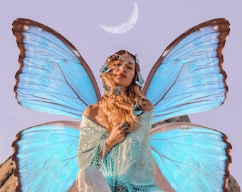 Digital Download | Blue Morpho Butterfly PNG Files | Photoshop Overlay Collage Graphics